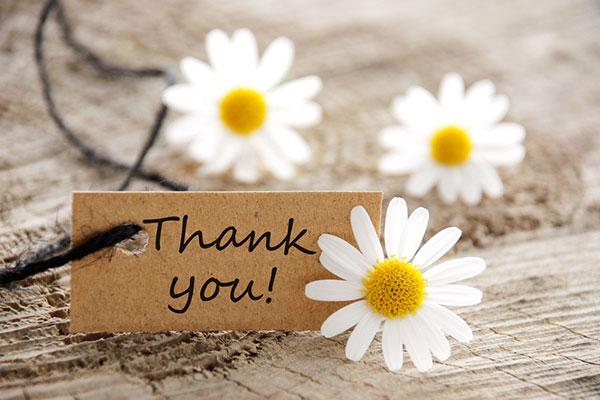 amazing journey thank you